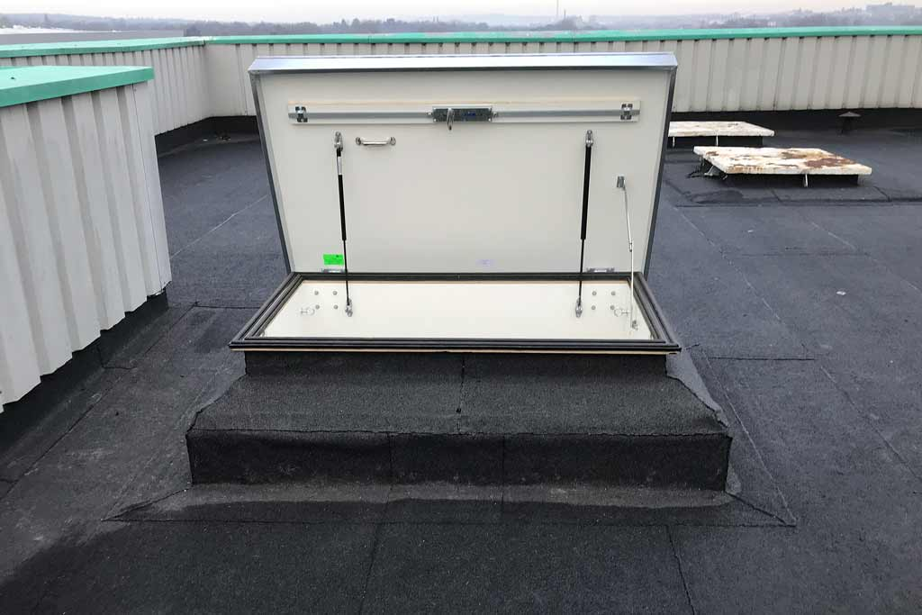 Retractable roof access ladder for specialist food processing plant
