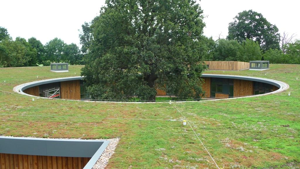 Green roof for The British Horse Society
