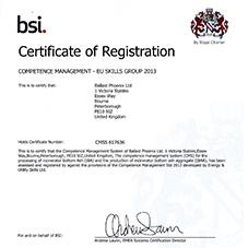 EU skills group 2013 certificate