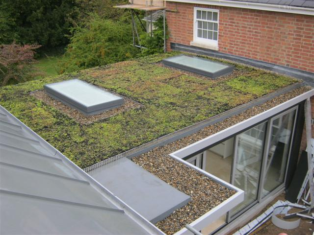 New Green Roof Membrane From Iko Polymeric