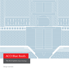 ACO Blue Roofs