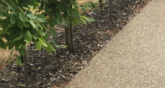 Custom made edging revitalises the Henry Moore Foundation