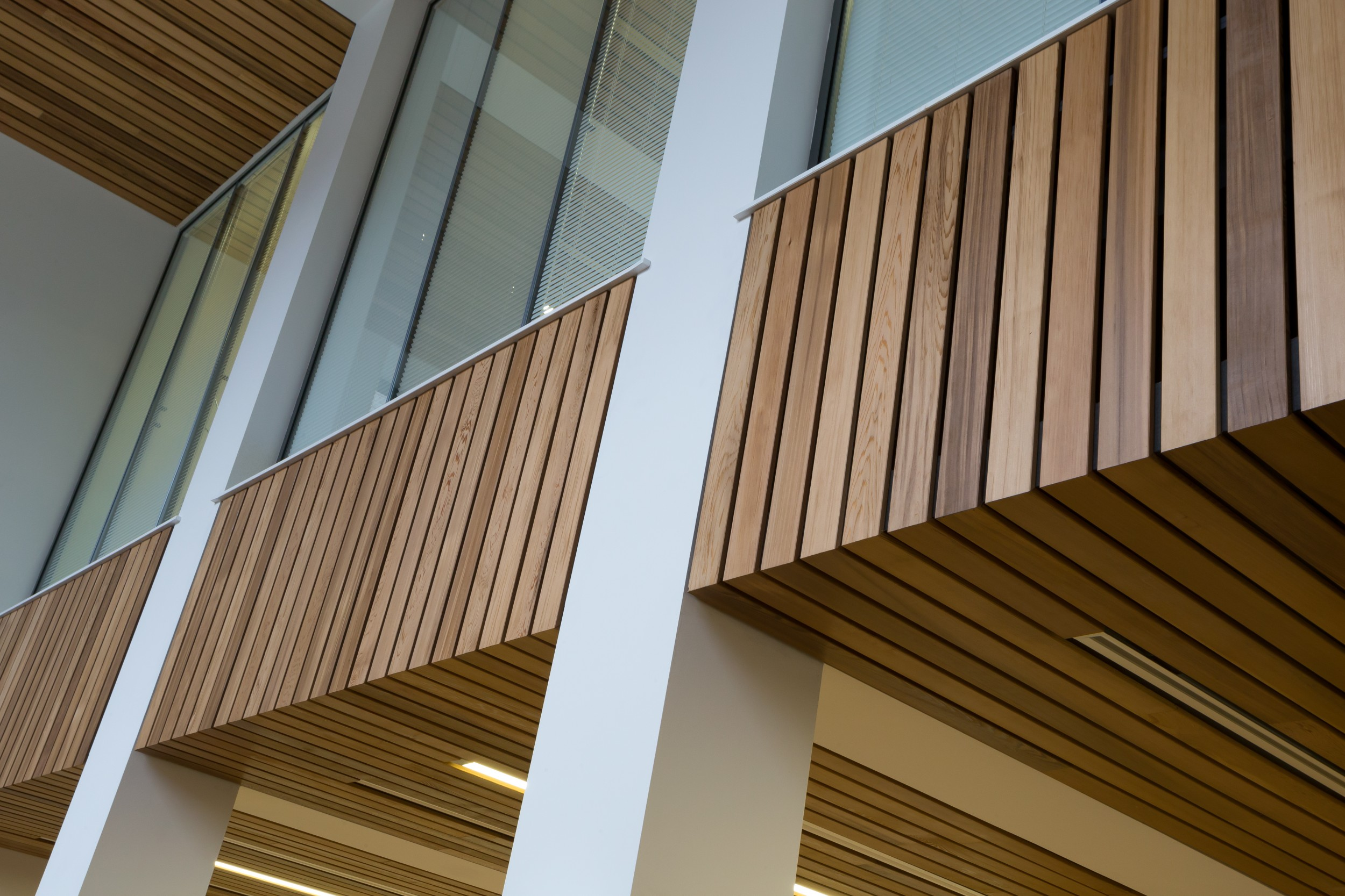 Wood ceiling for University of Newcastle