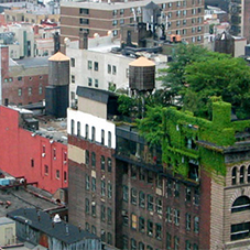 Sustainable housing: Go green on a shoestring