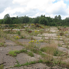 Should Starter Homes be built on Brownfield sites?