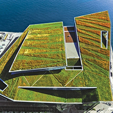 Why choose a Green Roof system?