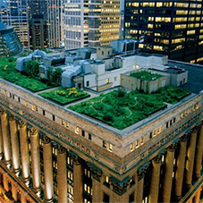 7 amazing green roof designs