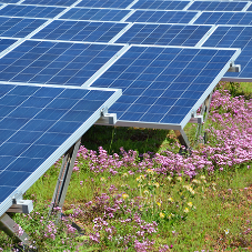 An overview of the UK Solar PV market: insight by AMA Research