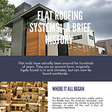 Flat roofs - a brief history [INFOGRAPHIC]