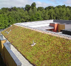 Blackdown Green Roof Chosen for Award-Winning Healthcare Project