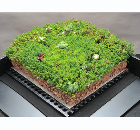 Green light for SIG Design & Technology and Blackdown green roof partnership