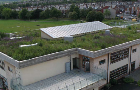 Bauder green roof on Sharrow Primary School declared a Local Nature Reserve