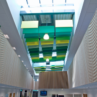 CEO Ceilings Acoustic Baffles at Falmer High School