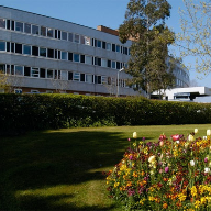Torbay Hospital, South Devon Healthcare NHS Foundation Trust