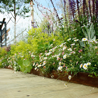 Custom EverEdge Landscape Edging At The Hampton Court Palace Flower Show