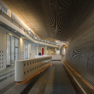 Hunter Douglas wooden ceiling at Faculty of Natural Science, Amsterdam