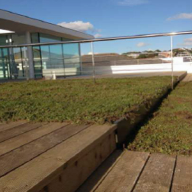 Green roof for upmarket roof terrace