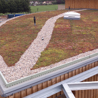 Isola Platon DE25 stores water for Sedum Roof
