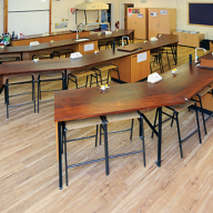 Expona Control specified for laboratory areas at Rye St Antony School, Oxford