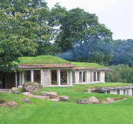 Which green roofing system is most suitable for my project?