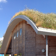 Green Roof Systems: An Overview