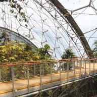 Canopy walkway for Eden Project