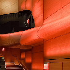 SanFoot Moabi wood veneer at Lincoln Center, New York