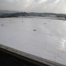 Single Ply Membranes: Comparing TPO Membrane and TPE