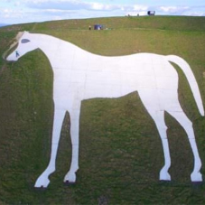 ThermaTech® cleans Westbury White Horse for the Queen