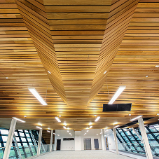 Wood ceiling system for science park scheme