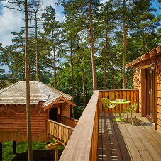 JB Shingles top off luxury Treehouses at Center Parcs