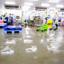 Fast-cure flooring system for The Saucy Fish Co
