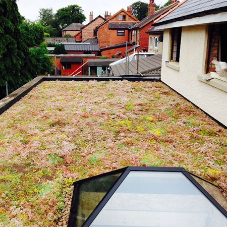 Green Roofs - What are the real benefits?