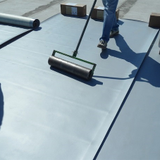 Roof Finishes