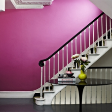 Albany offer perfect paint solutions