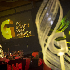 Employees of Geberit celebrate success at this year's MERIT Awards