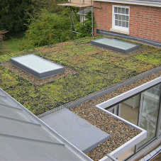 Are single ply flat roofing membranes suitable for use in green roof systems? [BLOG]