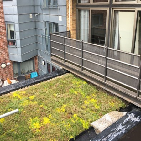 Wallbarn M-Tray® green roof for building refurbishment