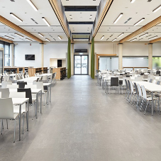 nora ensure excellent acoustics at this BMW Group canteen