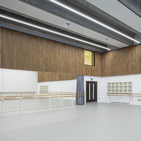 Internal fire rated and acoustic doorsets for English National Ballet