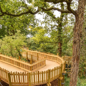 Vincent Timber provided treated softwood for innovative floating walkway