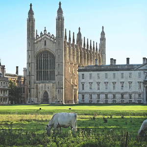 The Solid Wood Flooring Company specified for Kings College Cambridge