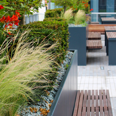 Bailey Streetscene introduces the Inspira modular planting range