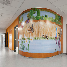 Gradus provide their Wall Protection products for the £350m Grange University Hospital