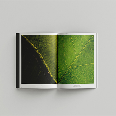 The Selux Book -  Light for Generations