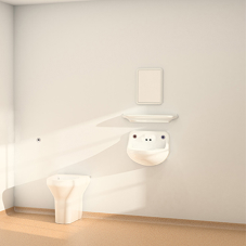 Ligature resistant safe ensuite shelf