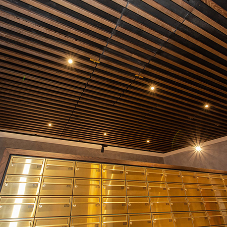 Slatted Timber features in Premium Residential Building