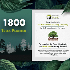 The Solid Wood Flooring Company celebrates 1800 Trees Planted