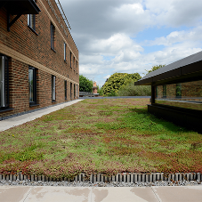 The appliance of science delivers modular green roof success