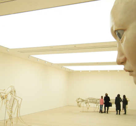 The Saatchi Gallery in London makes use of stretch fabrics